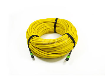 MPO - MPO/MTP APC 6.0mm Single Mode 24 Core MPO Trunk Cable ISO9001 ROHS Approval