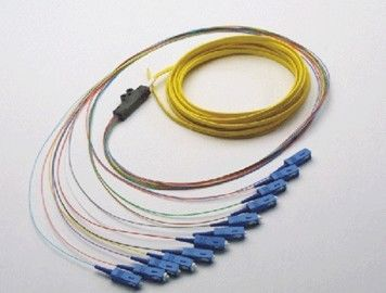 Optical Fiber Patch Cord Pigtail 1, 4, 6, 8, 12, 24, 36, 72, Fibers Bunch Fan-out Splitter